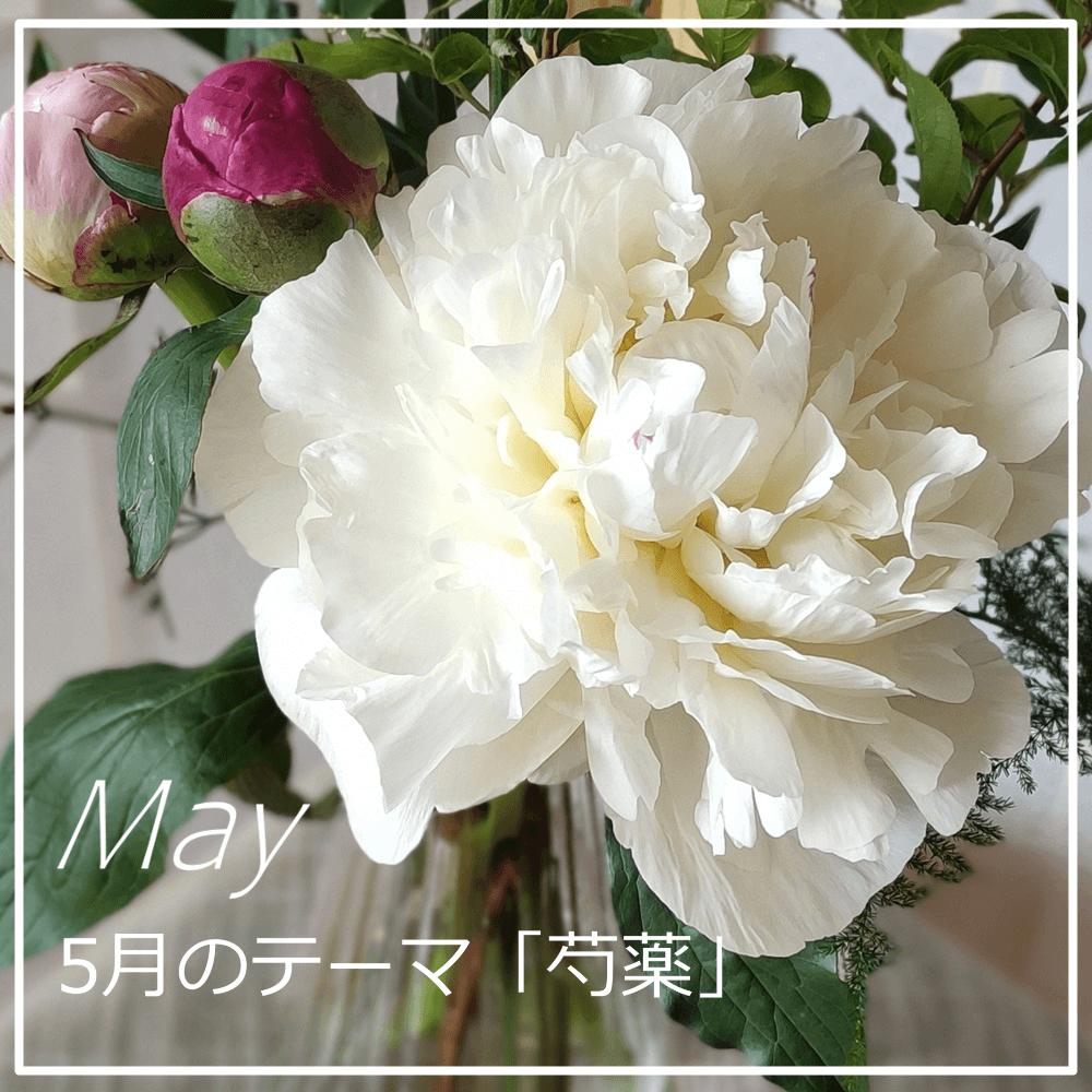 花のサブスク「LIFFT」5月号のレビュー
